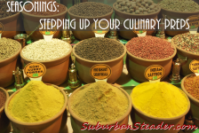 Seasonings: Stepping Up Your Culinary Preps