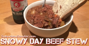Snowy Day Beef Stew Recipe