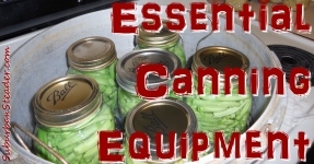 Canning Equipment: Essentials For Food Preservation