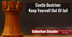 Castle Doctrine: Keep Yourself Out Of Jail