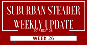 2017 Suburban Steader Update – Week 26